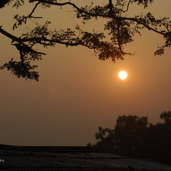 Sunset at The Sundarbans