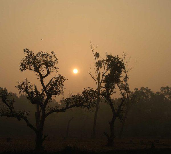 Beautiful Sunrise at Nijhum Island